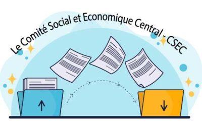 CSE CENTRAL DCF : les projets du Groupe Casino